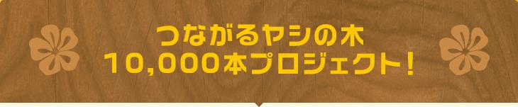 つながるヤシの木10,000本プロジェクト!